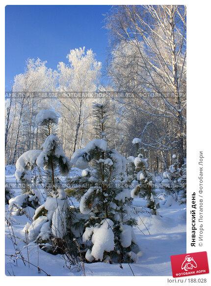 Январский день, фото № 188028, снято 9 сентября 2006 г. (c) Игорь Потапов / Фотобанк Лори