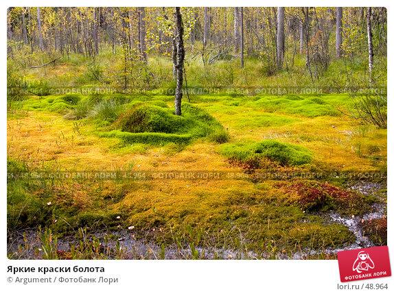 Купить «Яркие краски болота», фото № 48964, снято 10 сентября 2005 г. (c) Argument / Фотобанк Лори