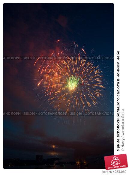 Яркие всполохи большого салюта в ночном небе, фото № 283060, снято 23 июля 2017 г. (c) Harry / Фотобанк Лори