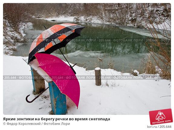 Купить «Яркие зонтики на берегу речки во время снегопада», фото № 205644, снято 18 февраля 2008 г. (c) Федор Королевский / Фотобанк Лори