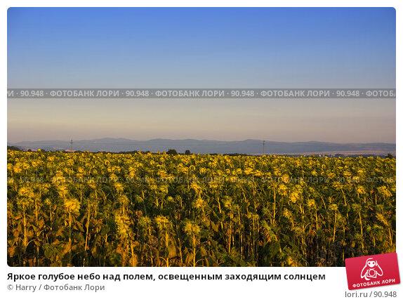 Яркое голубое небо над полем, освещенным заходящим солнцем, фото № 90948, снято 17 августа 2007 г. (c) Harry / Фотобанк Лори