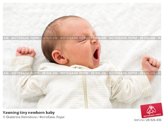 Купить «Yawning tiny newborn baby», фото № 28926436, снято 22 августа 2018 г. (c) Ekaterina Demidova / Фотобанк Лори