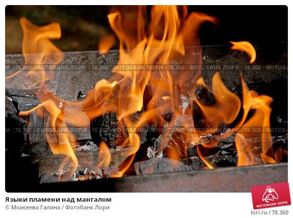 Языки пламени над мангалом, фото № 78360, снято 9 августа 2007 г. (c) Моисеева Галина / Фотобанк Лори