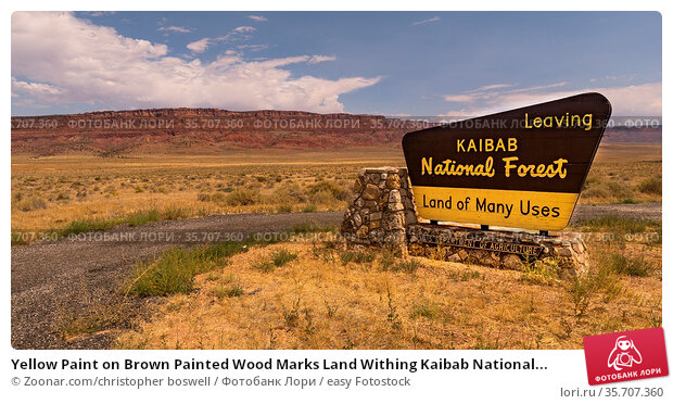 Yellow Paint on Brown Painted Wood Marks Land Withing Kaibab National... Стоковое фото, фотограф Zoonar.com/christopher boswell / easy Fotostock / Фотобанк Лори