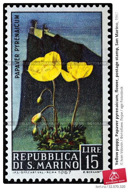 Yellow poppy, Papaver pyrenaicum, flower, postage stamp, San Marino, 1967. (2013 год). Редакционное фото, фотограф Ivan Vdovin / age Fotostock / Фотобанк Лори