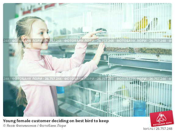Купить «Young female customer deciding on best bird to keep», фото № 26757248, снято 19 января 2017 г. (c) Яков Филимонов / Фотобанк Лори
