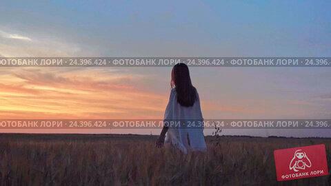 Купить «Young girl in a field at sunset», видеоролик № 24396424, снято 6 декабря 2016 г. (c) Raev Denis / Фотобанк Лори
