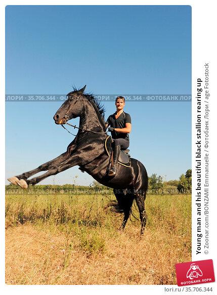 Young man and his beautiful black stallion rearing up. Стоковое фото, фотограф Zoonar.com/BONZAMI Emmanuelle / age Fotostock / Фотобанк Лори