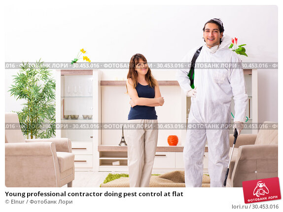 Young professional contractor doing pest control at flat. Стоковое фото, фотограф Elnur / Фотобанк Лори