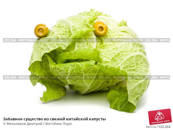 Забавное существо из свежей китайской капусты, фото № 332264, снято 8 июня 2008 г. (c) Мельников Дмитрий / Фотобанк Лори