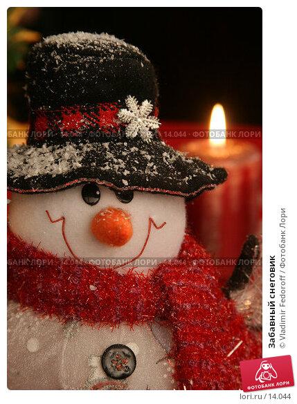 Забавный снеговик, фото № 14044, снято 3 ноября 2006 г. (c) Vladimir Fedoroff / Фотобанк Лори