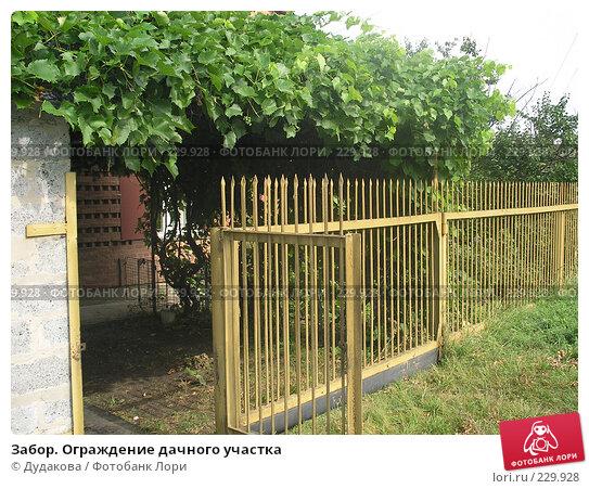 Забор. Ограждение дачного участка, фото № 229928, снято 25 августа 2007 г. (c) Дудакова / Фотобанк Лори