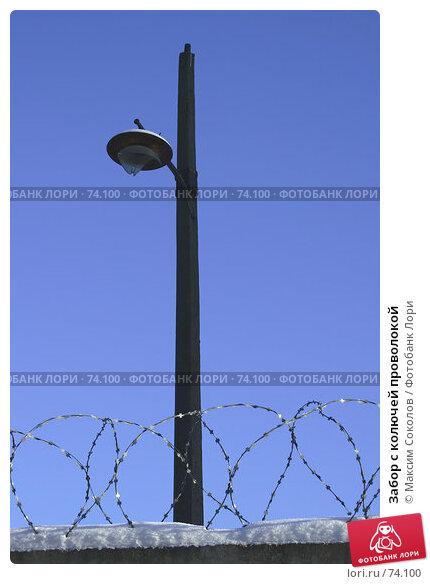 Забор с колючей проволокой, фото № 74100, снято 10 февраля 2007 г. (c) Максим Соколов / Фотобанк Лори