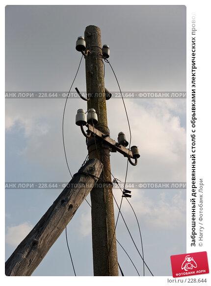 Заброшенный деревянный столб с обрывками электрических проводов, фото № 228644, снято 19 августа 2007 г. (c) Harry / Фотобанк Лори