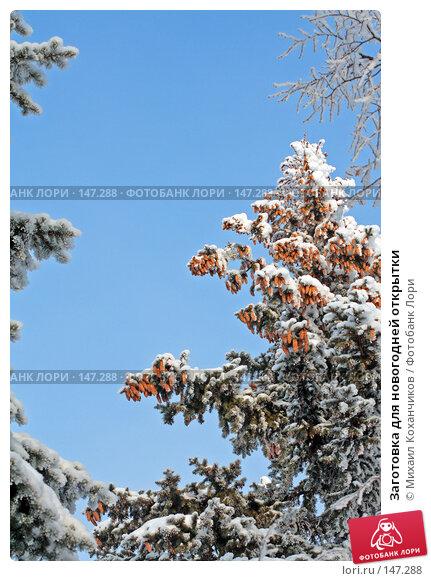 Заготовка для новогодней открытки, фото № 147288, снято 17 августа 2017 г. (c) Михаил Коханчиков / Фотобанк Лори
