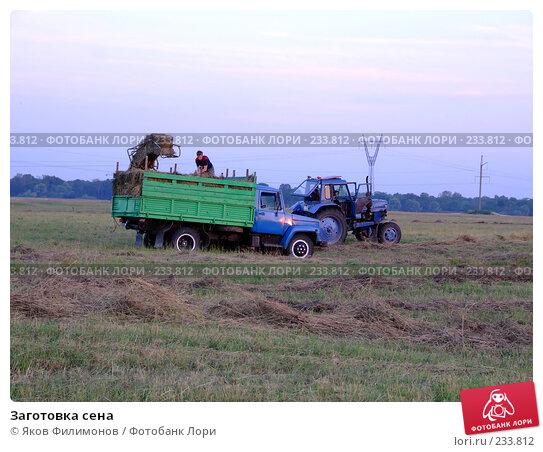 Заготовка сена, фото № 233812, снято 29 марта 2017 г. (c) Яков Филимонов / Фотобанк Лори