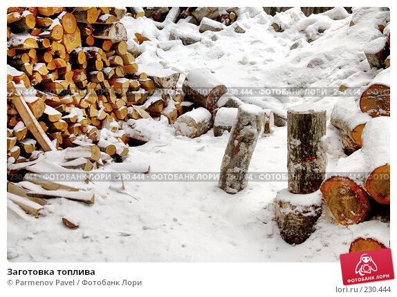 Купить «Заготовка топлива», фото № 230444, снято 24 февраля 2008 г. (c) Parmenov Pavel / Фотобанк Лори