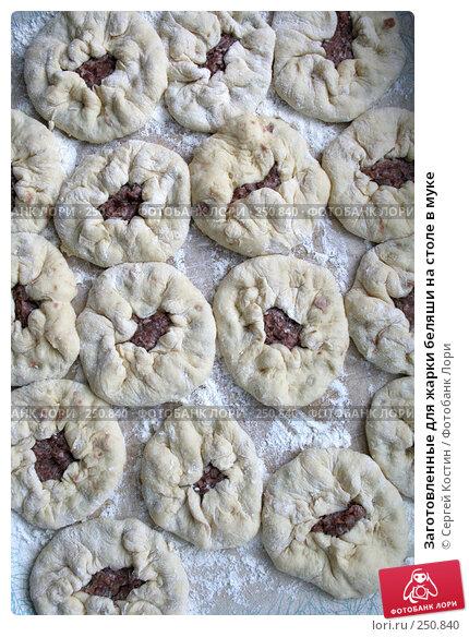 Купить «Заготовленные для жарки беляши на столе в муке», фото № 250840, снято 12 апреля 2008 г. (c) Сергей Костин / Фотобанк Лори