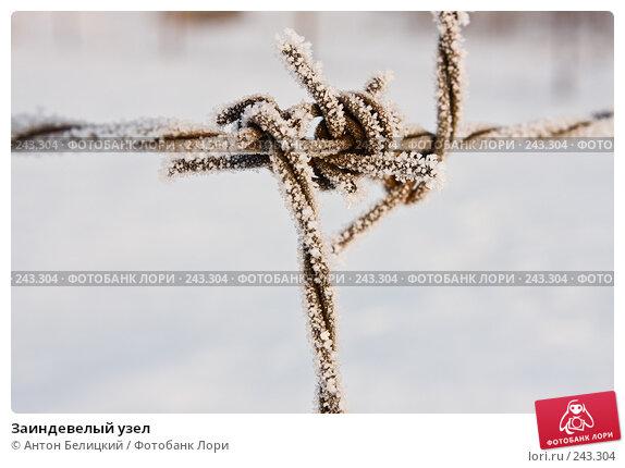Купить «Заиндевелый узел», фото № 243304, снято 11 февраля 2008 г. (c) Антон Белицкий / Фотобанк Лори