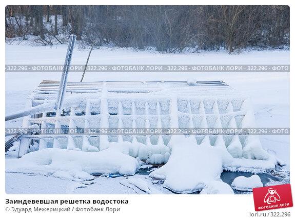 Заиндевевшая решетка водостока, фото № 322296, снято 2 января 2008 г. (c) Эдуард Межерицкий / Фотобанк Лори