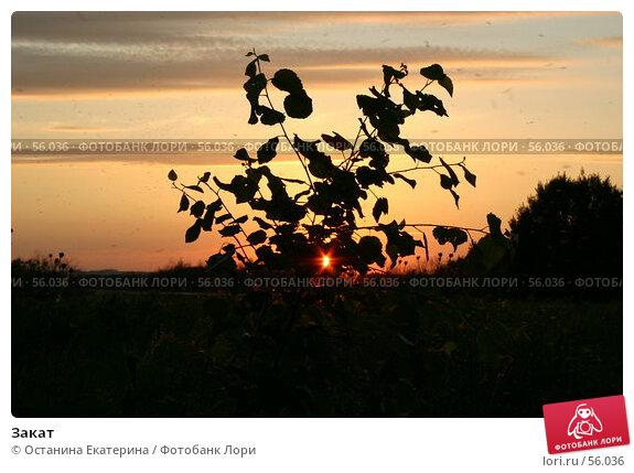 Закат, фото № 56036, снято 17 июня 2006 г. (c) Останина Екатерина / Фотобанк Лори