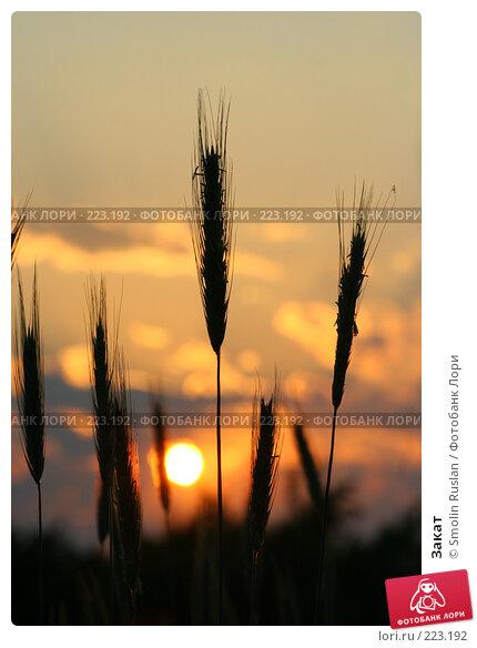 Закат, фото № 223192, снято 12 июня 2007 г. (c) Smolin Ruslan / Фотобанк Лори