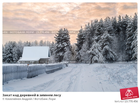 Купить «Закат над деревней в зимнем лесу», фото № 23770456, снято 3 января 2011 г. (c) Кекяляйнен Андрей / Фотобанк Лори