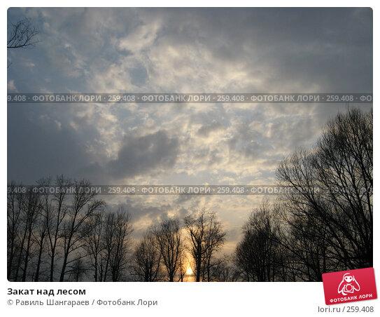 Закат над лесом, фото № 259408, снято 6 апреля 2008 г. (c) Равиль Шангараев / Фотобанк Лори
