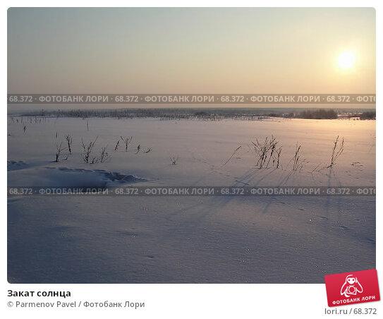 Закат солнца, фото № 68372, снято 16 марта 2005 г. (c) Parmenov Pavel / Фотобанк Лори