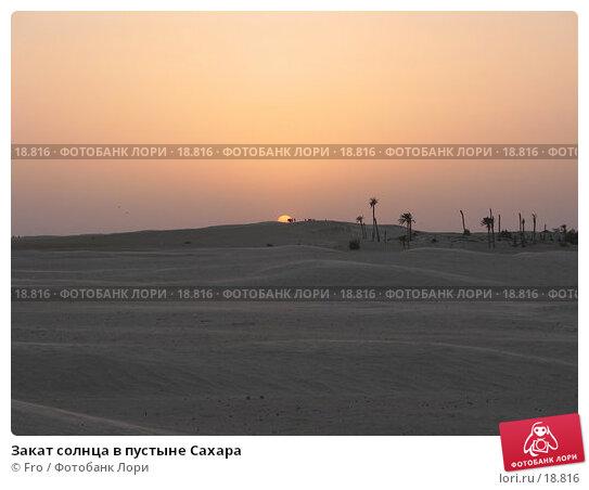 Закат солнца в пустыне Сахара, фото № 18816, снято 22 июня 2004 г. (c) Fro / Фотобанк Лори