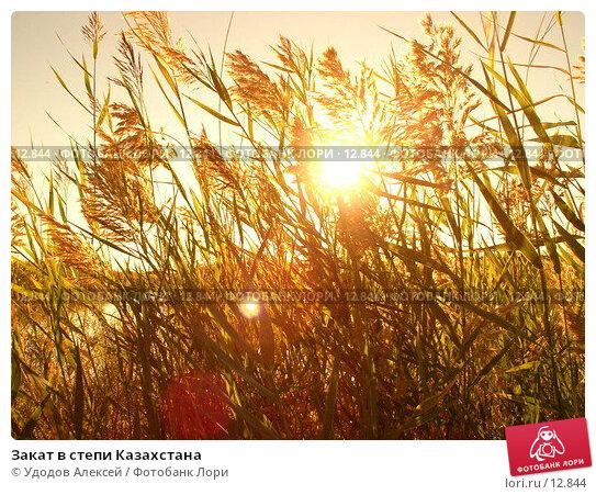 Закат в степи Казахстана, фото № 12844, снято 10 сентября 2005 г. (c) Удодов Алексей / Фотобанк Лори