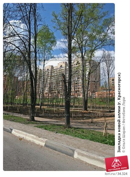 Закладка новой аллеи (г. Красногорск), фото № 34324, снято 7 мая 2006 г. (c) Ольга Шаран / Фотобанк Лори