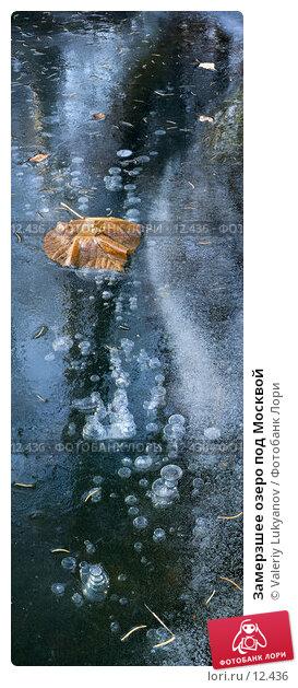 Замерзшее озеро под Москвой, фото № 12436, снято 6 ноября 2005 г. (c) Valeriy Lukyanov / Фотобанк Лори