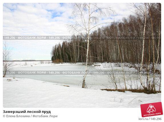 Замерзший лесной пруд, фото № 149296, снято 16 марта 2007 г. (c) Елена Блохина / Фотобанк Лори