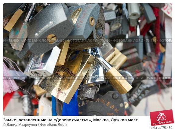 Купить «Замки, оставленные на «Дереве счастья», Москва, Лужков мост», фото № 75480, снято 22 августа 2007 г. (c) Давид Мзареулян / Фотобанк Лори