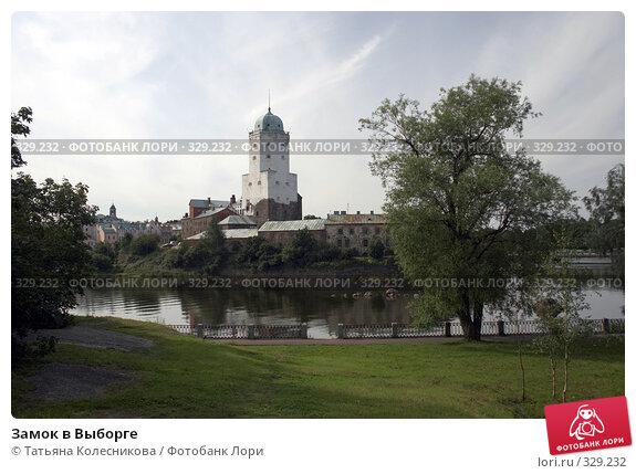 Замок в Выборге, фото № 329232, снято 4 августа 2007 г. (c) Татьяна Колесникова / Фотобанк Лори