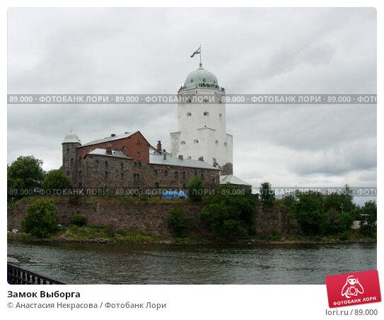 Замок Выборга, фото № 89000, снято 30 июля 2006 г. (c) Анастасия Некрасова / Фотобанк Лори