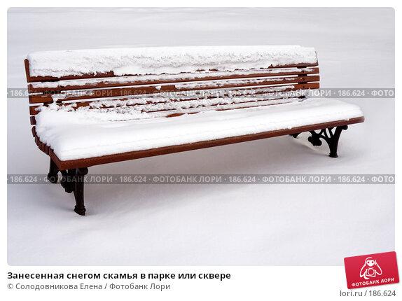 Занесенная снегом скамья в парке или сквере, фото № 186624, снято 7 февраля 2007 г. (c) Солодовникова Елена / Фотобанк Лори