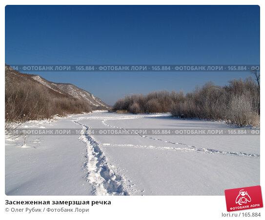 Заснеженная замерзшая речка, фото № 165884, снято 4 января 2008 г. (c) Олег Рубик / Фотобанк Лори