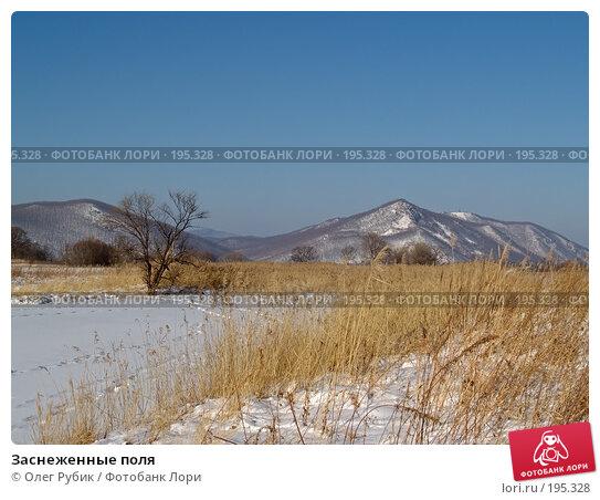 Заснеженные поля, фото № 195328, снято 27 января 2008 г. (c) Олег Рубик / Фотобанк Лори