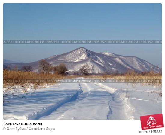 Купить «Заснеженные поля», фото № 195352, снято 27 января 2008 г. (c) Олег Рубик / Фотобанк Лори