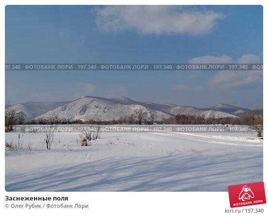 Заснеженные поля, фото № 197340, снято 5 февраля 2008 г. (c) Олег Рубик / Фотобанк Лори