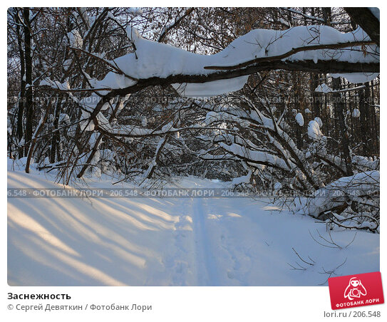 Заснежность, фото № 206548, снято 19 января 2008 г. (c) Сергей Девяткин / Фотобанк Лори