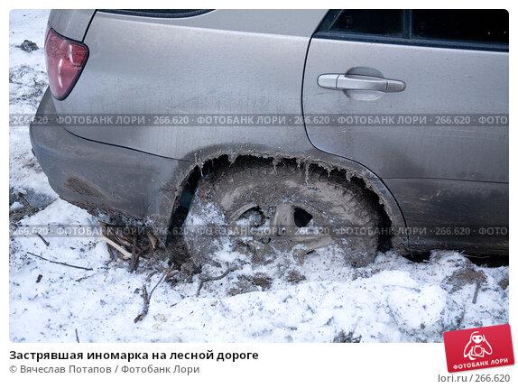Застрявшая иномарка на лесной дороге, фото № 266620, снято 1 января 2008 г. (c) Вячеслав Потапов / Фотобанк Лори