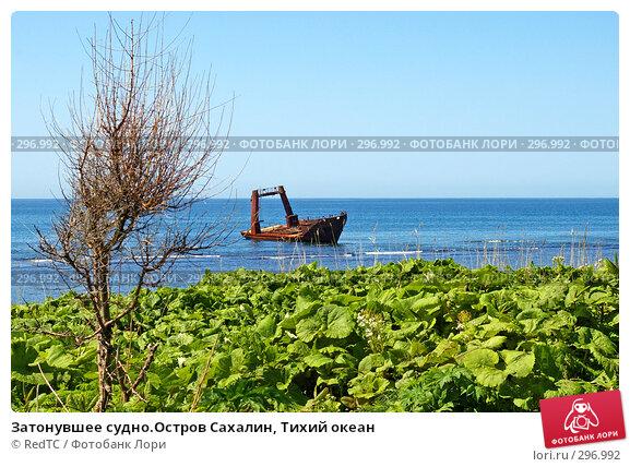 Затонувшее судно.Остров Сахалин, Тихий океан, фото № 296992, снято 23 мая 2008 г. (c) RedTC / Фотобанк Лори