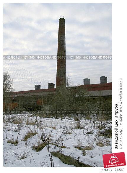 Заводской цех и труба, фото № 174560, снято 13 января 2008 г. (c) АЛЕКСАНДР МИХЕИЧЕВ / Фотобанк Лори