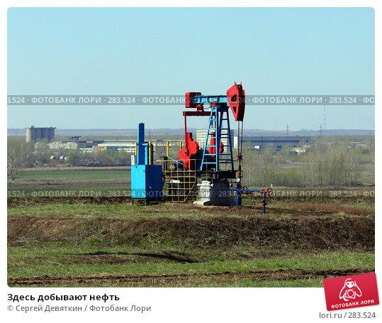 Купить «Здесь добывают нефть», фото № 283524, снято 25 апреля 2008 г. (c) Сергей Девяткин / Фотобанк Лори