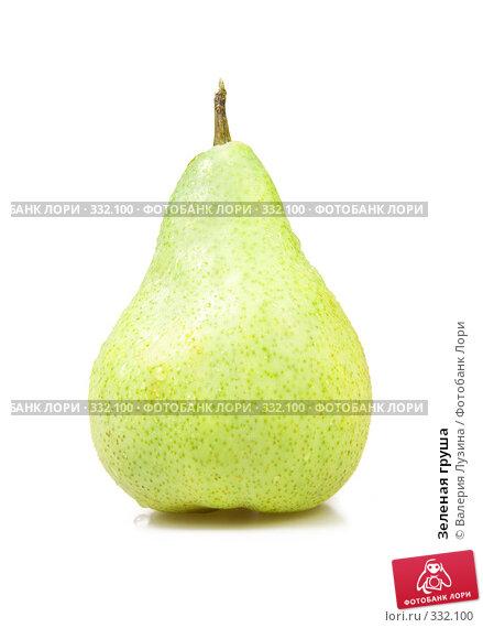 Купить «Зеленая груша», фото № 332100, снято 18 июня 2008 г. (c) Валерия Потапова / Фотобанк Лори