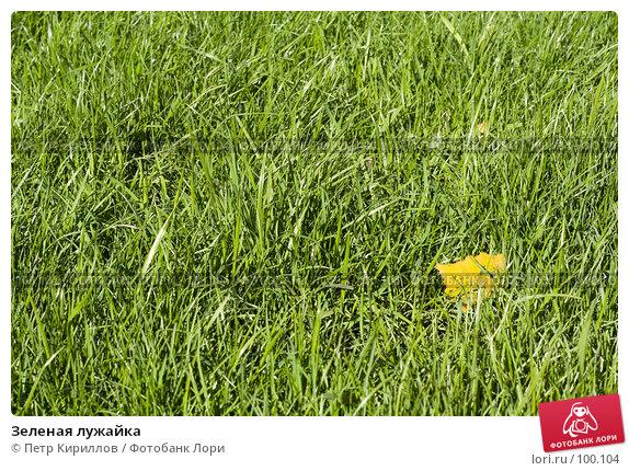Зеленая лужайка, фото № 100104, снято 10 октября 2007 г. (c) Петр Кириллов / Фотобанк Лори
