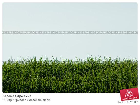 Купить «Зеленая лужайка», фото № 102992, снято 20 марта 2018 г. (c) Петр Кириллов / Фотобанк Лори